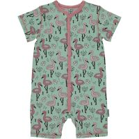 MM Sommer-Strampler Flamingos, Bio